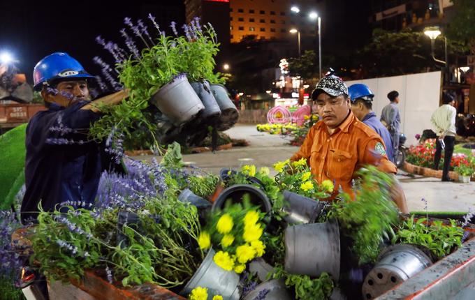 Lục thùng rác xin bông khi đường hoa Nguyễn Huệ dọn