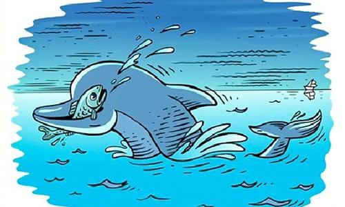 Sinh vật bí ẩn nào khác đang săn mồi cùng cá heo?