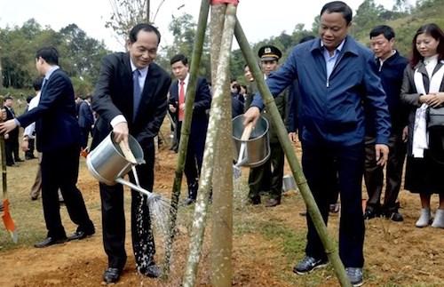 Chủ tịch nước Trần Đại Quang (trái) trồng cây tại Bắc Kạn sáng 21/2. Ảnh: Nông nghiệp
