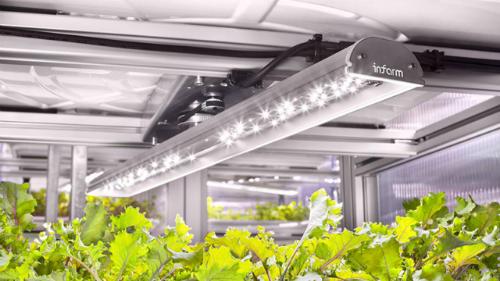 Hệ thống chiếu sáng, cung cấp nước, dinh dưỡng, độ ẩm và pH như một phòng thí nghiệm thu nhỏ.