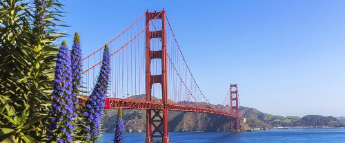 California có cộng đồng người Việt lớn, tạo thuận lợi giúp du học sinh hòa nhập môi trường mới.