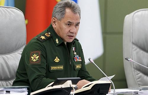 Bộ trưởng Quốc phòng NgaSergei Shoigu. Ảnh: Tass.