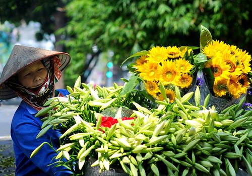Các tỉnh miền Bắc đang trải qua đợt nắng nóng đầu tiên của năm 2018. Ảnh minh hoạ: Giang Trịnh.