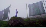 Nông dân chế lưới hứng sương, thu hàng triệu lít nước sạch