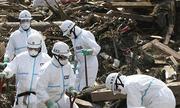 Thực tập sinh Việt Nam tố bị lừa khử nhiễm phóng xạ ở Nhật Bản