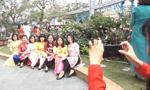 Tấp nập chụp ảnh ở lễ hội hoa hồng Bulgaria Hà Nội