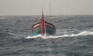 27 giờ cứu nạn 9 người trôi dạt ở đảo Phú Quý