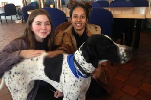 Sinh viên Đại học Sussex (Anh) thích thú với sự có mặt của chó trị liệu.