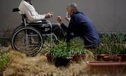 Nhà tù chật ních tù nhân 80, 90 tuổi ở Nhật