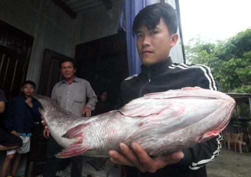 Cá dài 1,1m, nặng 10,5 kg. Ảnh: Đắc Thành.