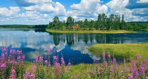Khung cảnh mùa hè ở Phần Lan. Ảnh: Romaniajournal