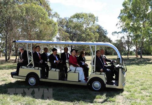 Toàn quyền Australia lái xe điện đưa Thủ tướng  Nguyễn Xuân Phúc và Phu nhân đi tham quan vườn thú Kangaroo. Ảnh: TTXVN.