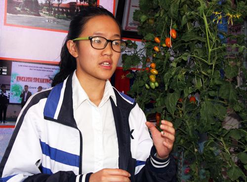 Gian hàng trưng bày các nông sản của học sinh Lâm Đồng. Ảnh: Mạnh Tùng.