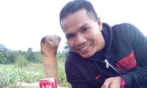 Người huấn luyện rắn nổi tiếng Malaysia chết vì bị rắn cắn