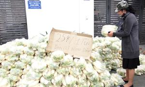 Hàng chục tấn củ cải của nông dân Hà Nội được 'giải cứu'
