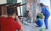 Vườn thú Hà Nội dùng ống thổi bắn thuốc mê bắt khỉ hoang