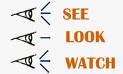 Trắc nghiệm phân biệt 'see', 'look', 'watch'