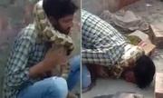 Người đàn ông Ấn Độ suýt bị siết chết khi biểu diễn với trăn