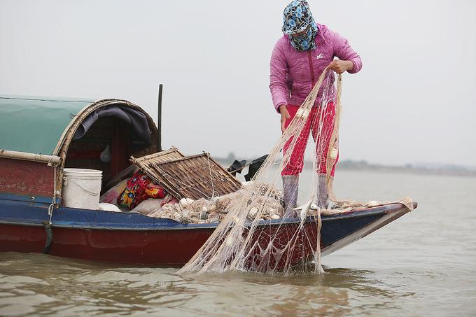 Ngư dân vào mùa đánh bắt cá mòi trên sông Hồng