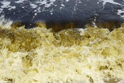 Vệt nước đen tấp vào bờ hôm 25/3. Ảnh: Ngọc Trường.