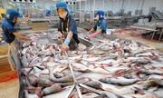 Đại sứ Mỹ giải thích việc áp thuế với cá da trơn của Việt Nam