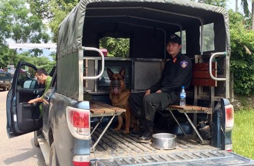 Cảnh sát cùng chó nghiệp vụ truy lùng hai nghi can trốn trong rừng suốt đêm qua. Ảnh: Phạm Linh.