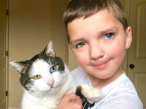 Madden và chú mèo Moon có những đặc điểm ngoại hình giống hệt nhau.