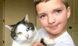 Cậu bé Mỹ thoát khỏi ám ảnh bị bắt nạt nhờ chú mèo hai màu mắt