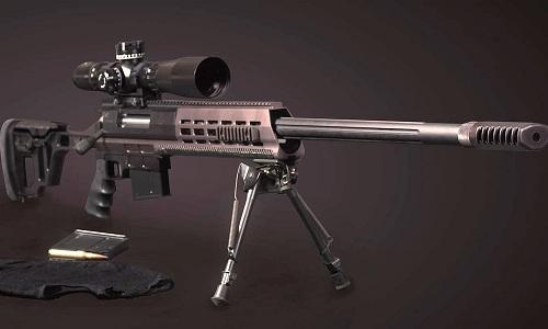 Mẫu súng bắn tỉa DXL-3. Ảnh: RBTH.
