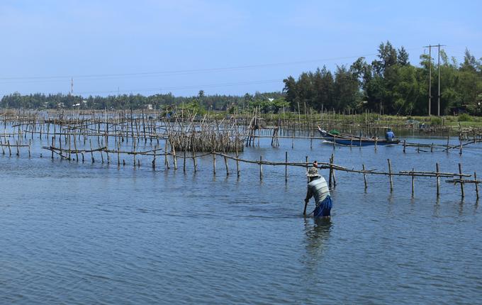 Người dân Quảng Nam dầm mình trong nước bắt hến