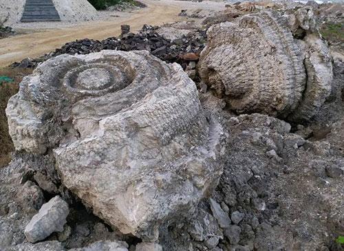 Hóa thạch san hô 5.000 năm. Ảnh: Nguyễn Xuân Nam.