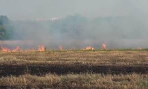 Người dân vẫn đốt rơm rạ hai bên cao tốc Long Thành