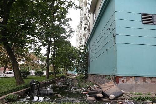 Xung quanh tòa nhà N06 là nước thải. Ảnh: Gia Chính