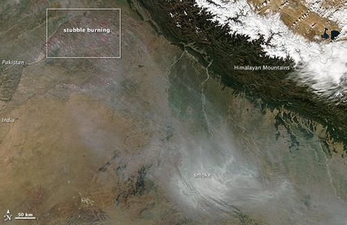 Những đám cháy do đốt rơm ở Punjab (góc trên bên trái) tạo ra lượng lớn khói bay về phía Delhi (góc dưới bên phải) tháng 11/2013. Ảnh: NASA.
