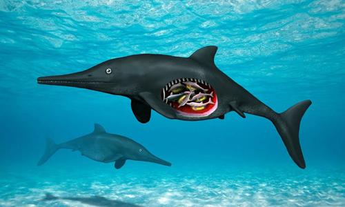 Thằn lằn cá sinh sống phổ biến dưới biển trong kỷ Jura. Ảnh:Nobumichi Tamura.