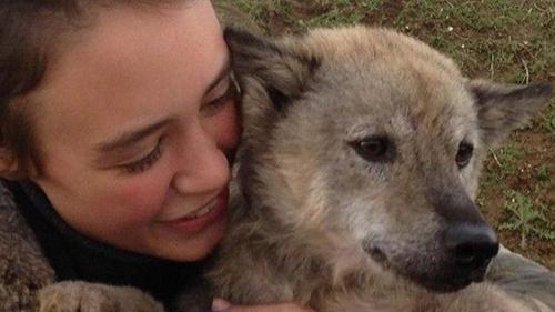 Chú chó Việt Nam đoàn tụ cùng cô chủ sau 9 ngày đi lạc ở Pháp