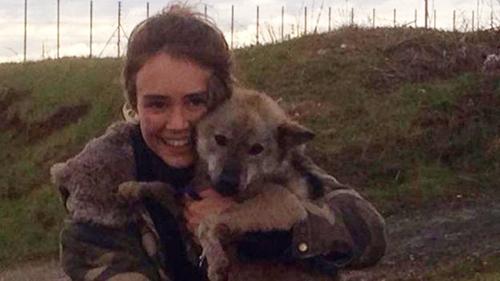 Cô gái Anh khóc nức nở vì suýt lạc mất chú chó Việt Nam