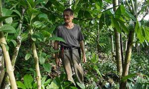 Lão nông Thụy Sĩ hơn 30 năm làm vườn giữa rừng