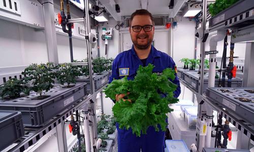 Nhà khoa học thu hoạch rau trồng tại Nam Cực. Ảnh: DLR.