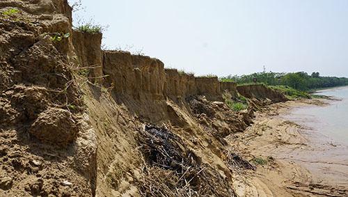 Cánh đồng ven sông Chu sạt lở hàng nghìn mét do nạn hút cát trái phép. Ảnh: Lê Hoàng.