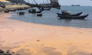 Vệt nước đỏ ở Quảng Bình do tảo nở hoa