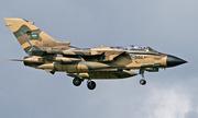 Arab Saudi tuyên bố sẵn sàng tham gia tấn công Syria