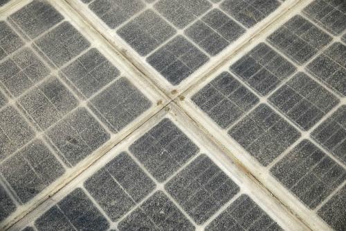 Tấm năng lượng mặt trời đặt dưới loại vật liệu trong suốt. Ảnh: Bloomberg.