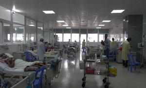Kỷ luật bác sĩ, điều dưỡng để bệnh nhân bị rắn cắn tử vong
