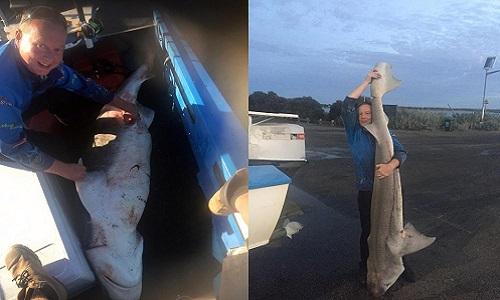 Orlov bên xác con cá mập bảy mang cái dài gần ba mét. Ảnh: Caters.