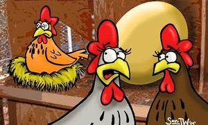 Luyện nghe tiếng Anh: Ngày nghỉ của đàn gà