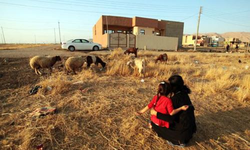 Laila bế con gái ngồi ngắm đàn cừu ở nơi an toàn, chờ đợi tin tức về chồng và con trai. Ảnh: BBC.