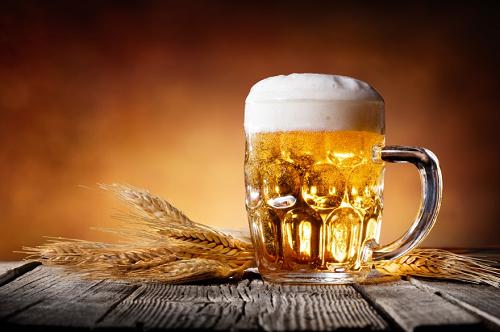 Lúa mạch là thành phầnquan trọng tạo nên bia chuẩn vị.