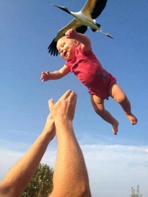 Ba sẽ là cánh chim cho con bay thật xa.