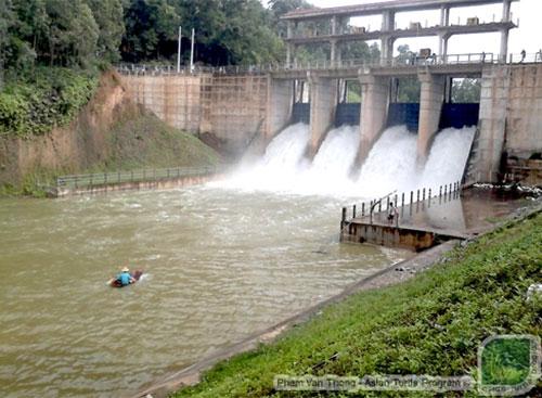 Đập thủy lợi hồ Đồng mô mở cửa xả lũ lần đầu tiên. Lưu lượng nước chảy qua đập có thể lên tới 28m3/giây. Dòng nước chảy ra đập có thể dẫn dụ rùa tới khu vực cửa xả và bị mắc kẹt ở đó